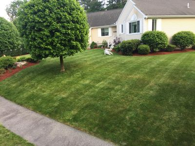 Avatar for Quality Landscaping & Construction Lynn, MA Thumbtack