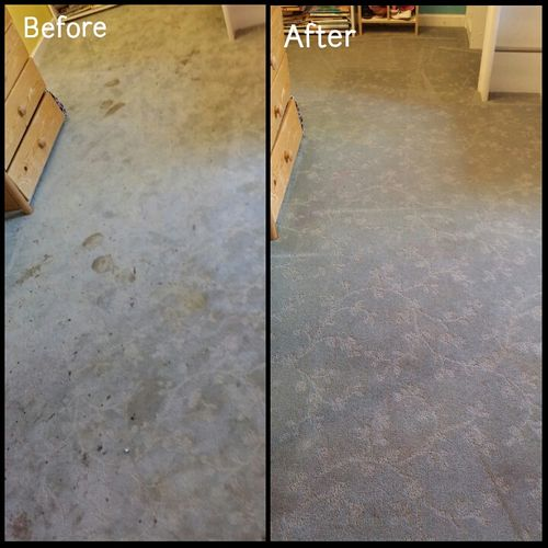 Before and after of residential carpet