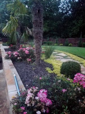 Avatar for DP Landscaping and Tree Services Gainesville, GA Thumbtack