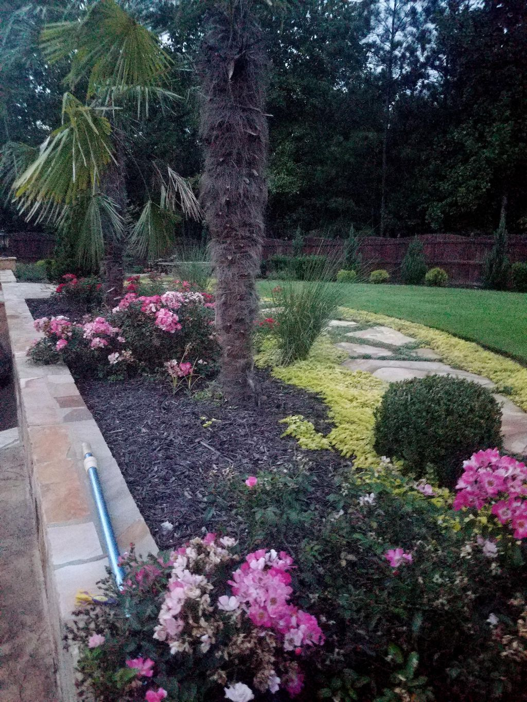 DP Tree Removal and Landscaping INC.