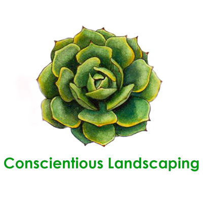 Avatar for Conscientious Landscaping Costa Mesa, CA Thumbtack