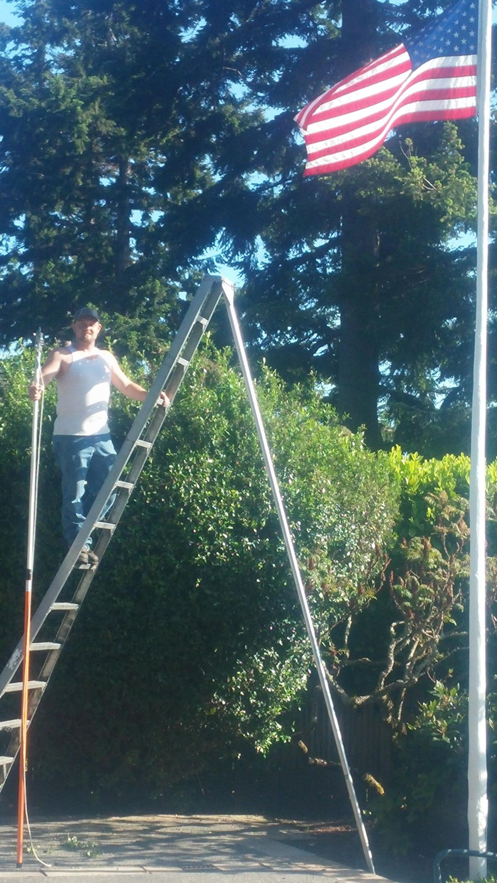Beam's Lawn and Landscape Care
