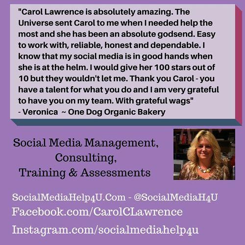 Testimonial from Veronica Glynn Owner of One Dog Organic Bakery.