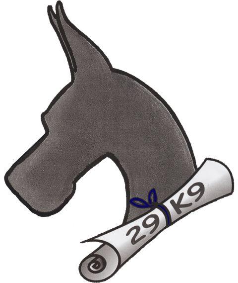 29K9 Dog Training