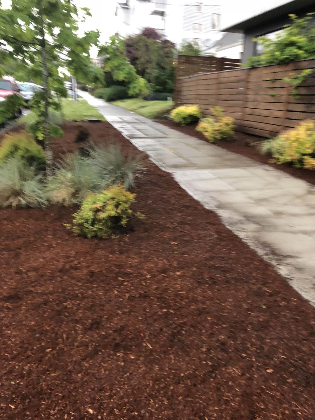 Miguelense Landscaping