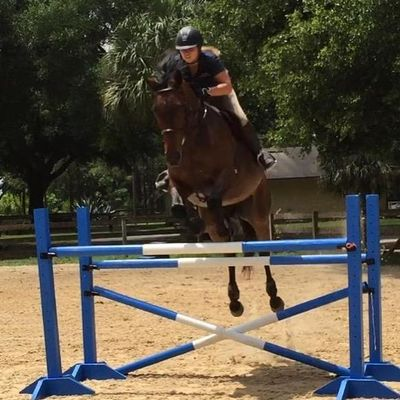 Avatar for Graham Equine Performance International LLC Sorrento, FL Thumbtack