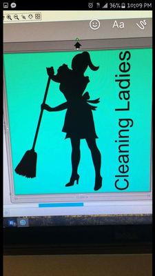 Avatar for Cleaning Ladies