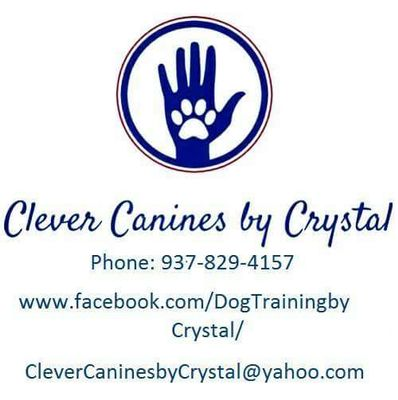 Avatar for Clever Canines by Crystal Dayton, OH Thumbtack