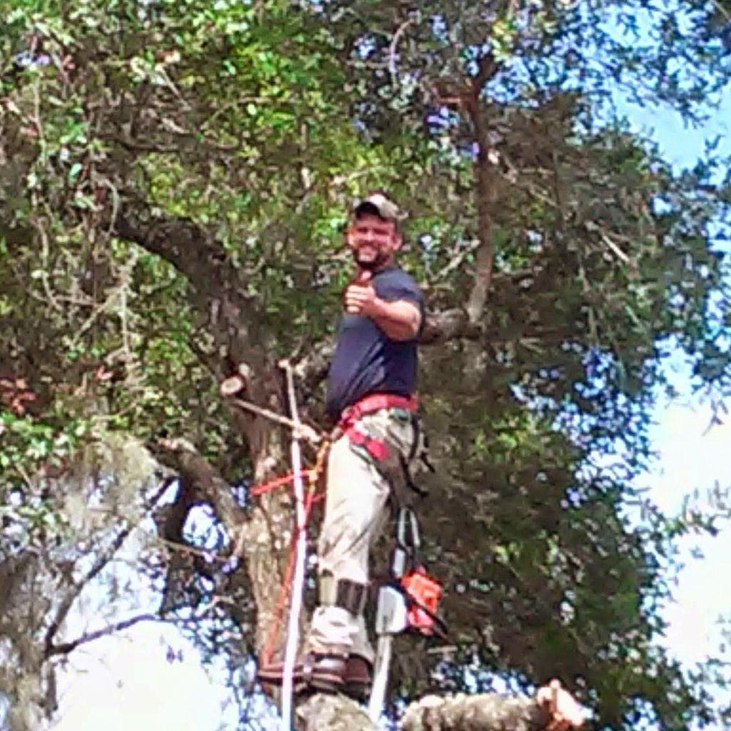 Matt's Pro Arbor Care, Inc.