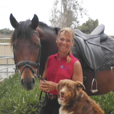Avatar for Belvedere Stables, LLC San Diego, CA Thumbtack