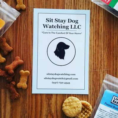 Avatar for Sit Stay Dog Watching LLC Miamisburg, OH Thumbtack
