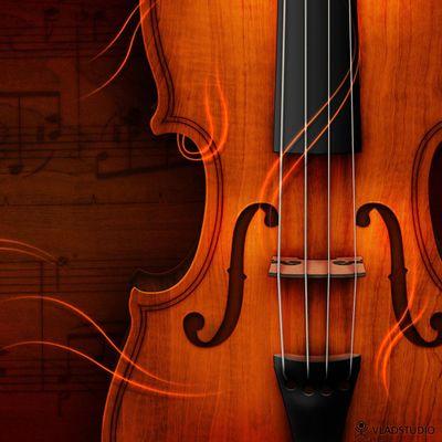 Avatar for Denise Martel Bovie - String Instrument Lessons Somerset, MA Thumbtack
