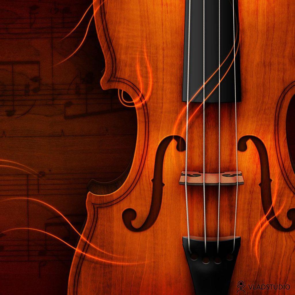 Denise Martel Bovie - String Instrument Lessons