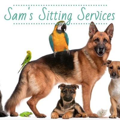Avatar for Sam's Sitting Services