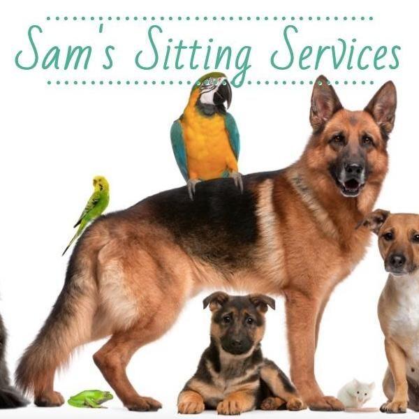 Sam's Sitting Services