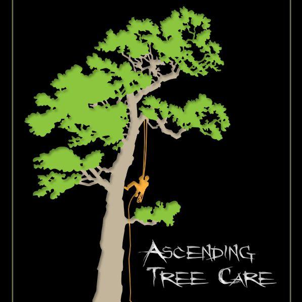 Ascending Tree Care