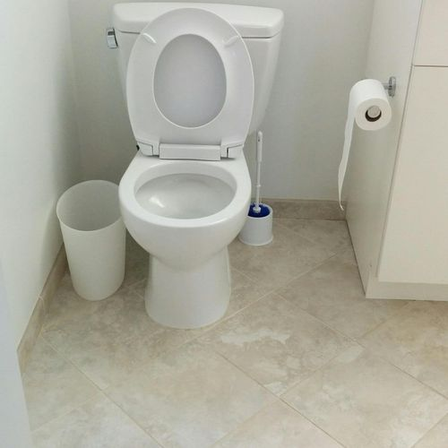 Toilet Cleaning Complete