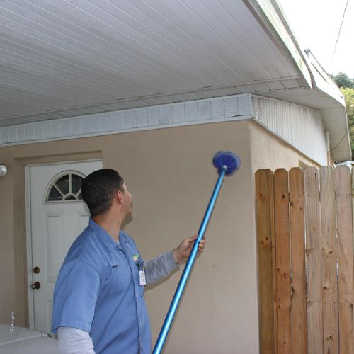 We sweep the eaves for spider webs and wasp nests