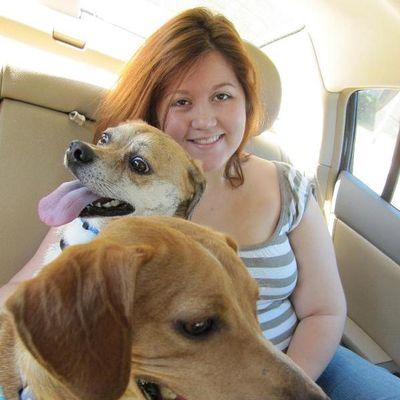 Avatar for The Chipper Pet Sitter, LLC Peckville, PA Thumbtack