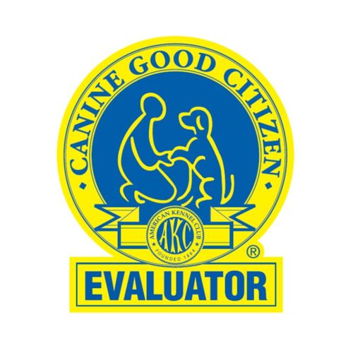 CGC Title Exam available!