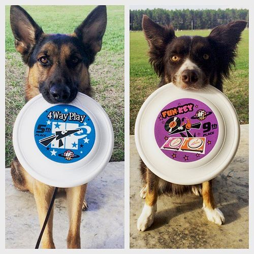 UpDog International Finals - They both placed in the top ten in competitions!