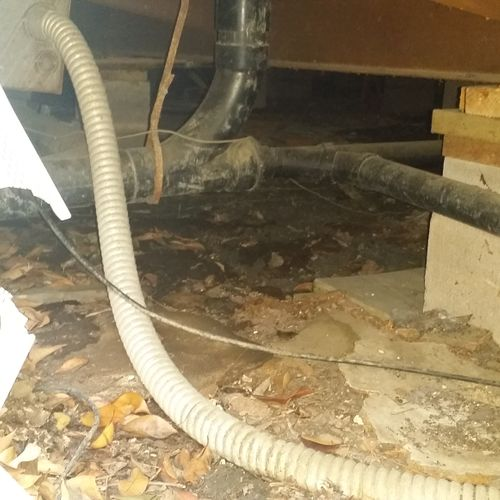 The Before picture of a crawlspace after a sewage backup