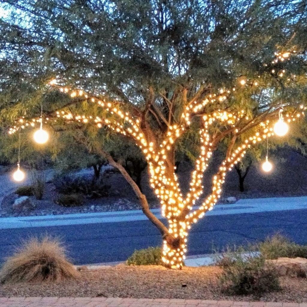 Phoenix Christmas Decorators