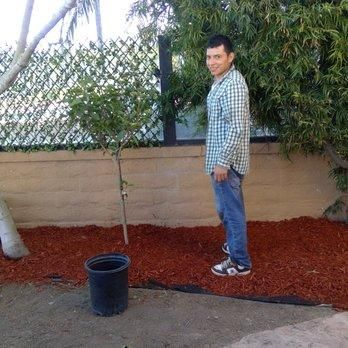 Avatar for FNL landscaping Costa Mesa, CA Thumbtack