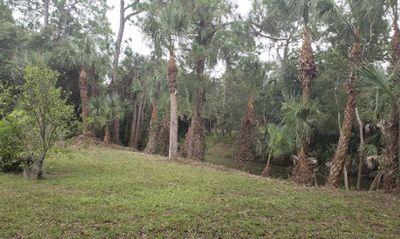 Avatar for JAVIER TREE SERVICE North Port, FL Thumbtack