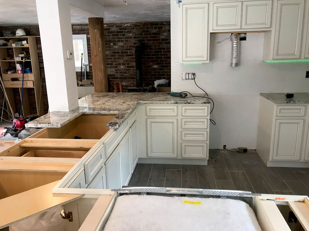 Kitchen Gut and Remodel