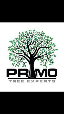 Avatar for Primo Tree Experts, LLC Saint Paul, MN Thumbtack