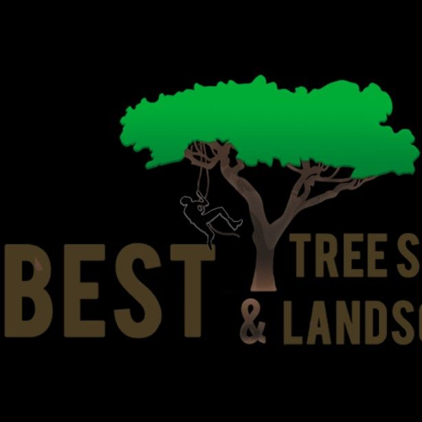 BEST TREE SERVICE & LANDSCAPING