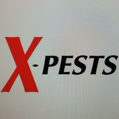 Avatar for X-Pests Defiance, MO Thumbtack