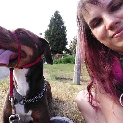 Avatar for Leash the Dog Services Tacoma, WA Thumbtack