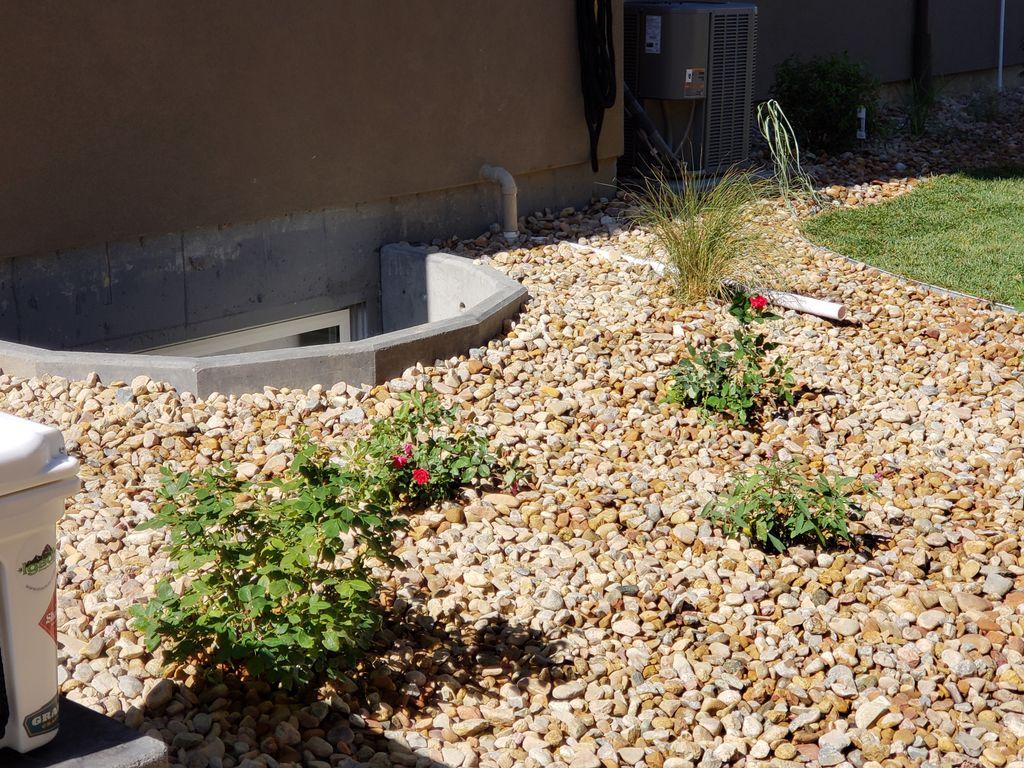 New Home backyard with sprinkler system
