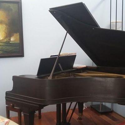 Avatar for Lieras Piano Studio