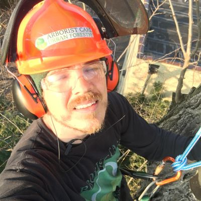 Avatar for Arborist Care Urban Forestry