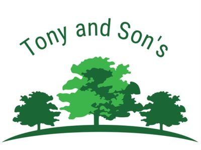 Avatar for Tony and Son's Landscaping