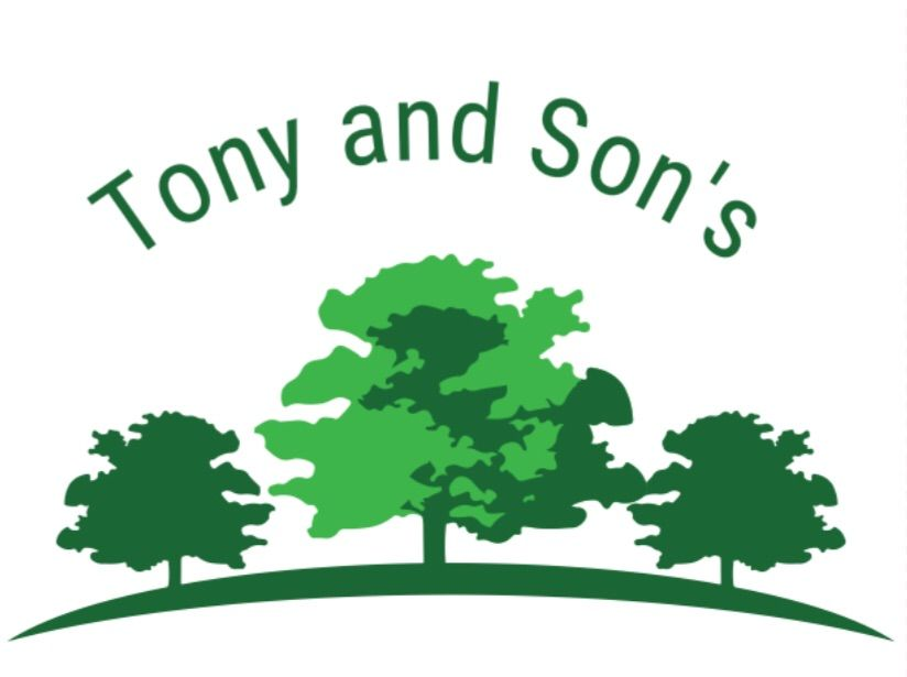 Tony and Son's Landscaping