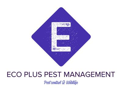 Avatar for Eco Plus Pest Management & Wildlife N.Y & N.J