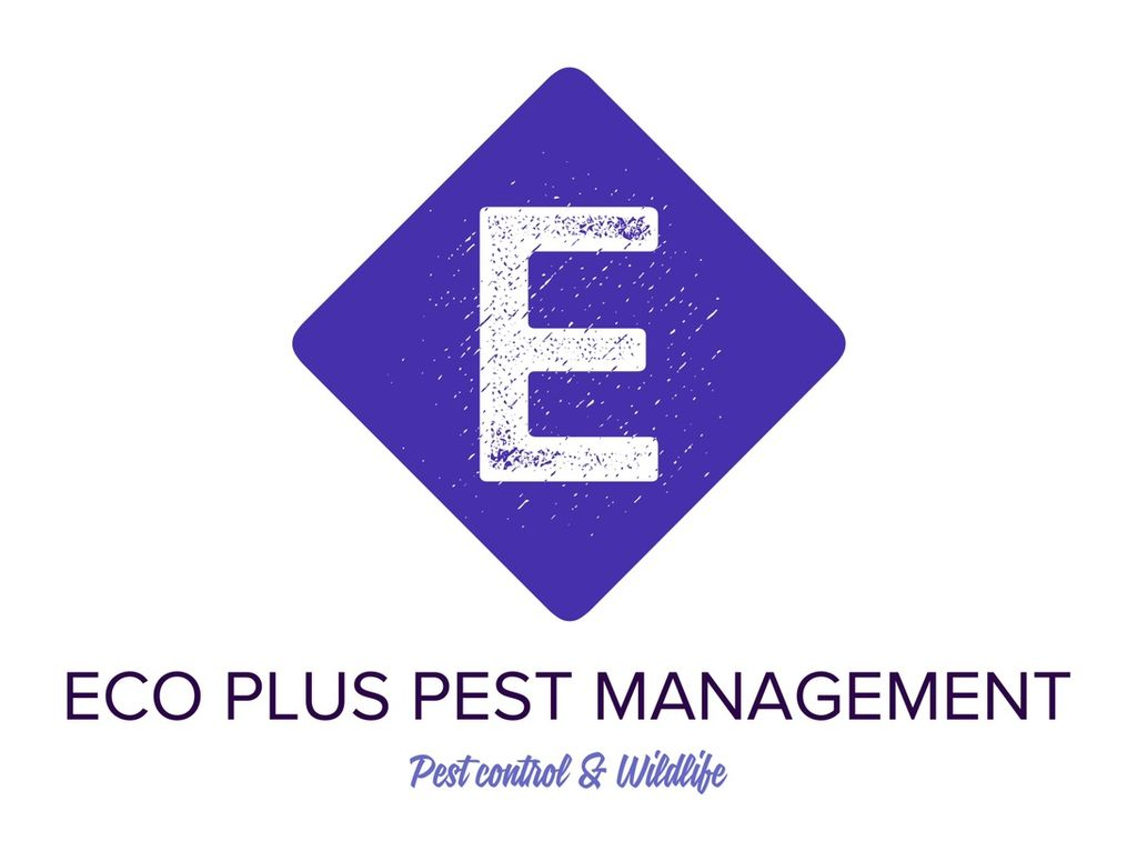 Eco Plus Pest Management & Wildlife N.Y & N.J