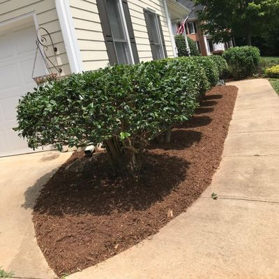 Avatar for Cruz lawncare & landscaping Raleigh, NC Thumbtack