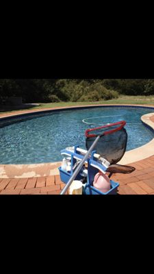 Avatar for Smith Family Pool Service Bradenton, FL Thumbtack