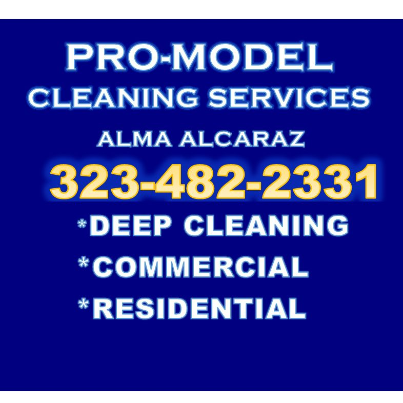 PRO-MODEL CLEANING SERVICES