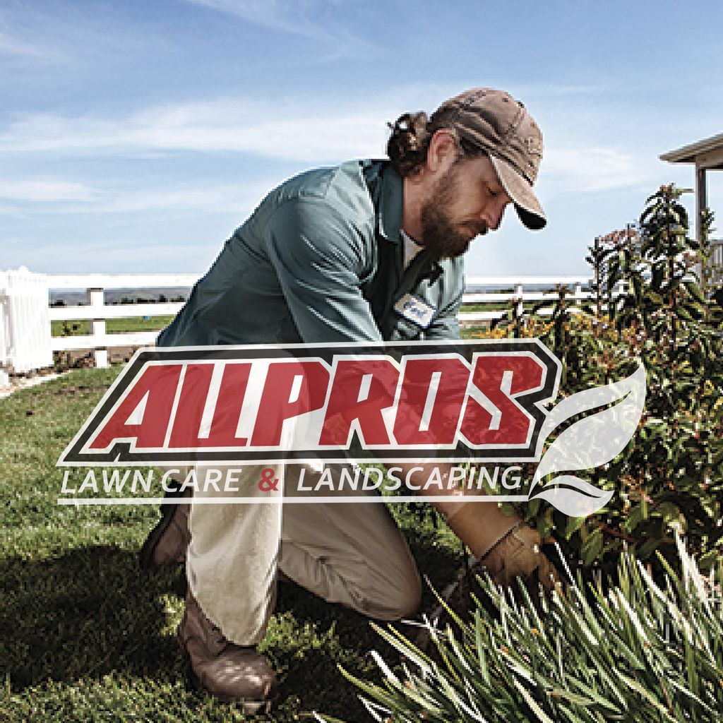 AllPros lawn care