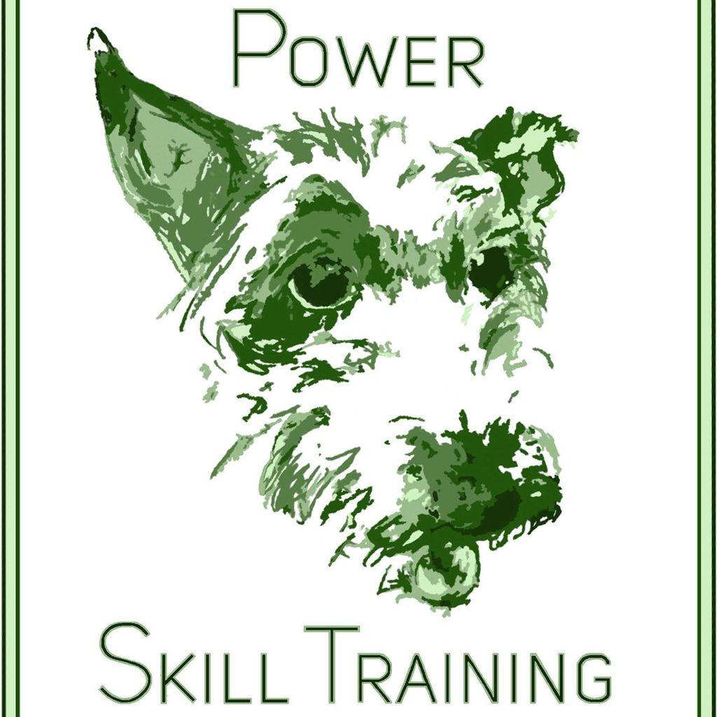 Power Skill Training