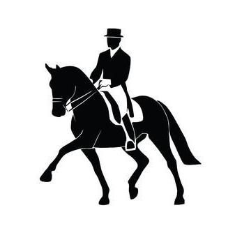 Avatar for Horseback Riding Lessons