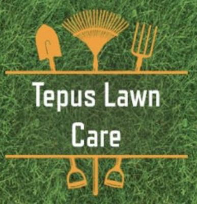 Avatar for Tepus Lawn Care