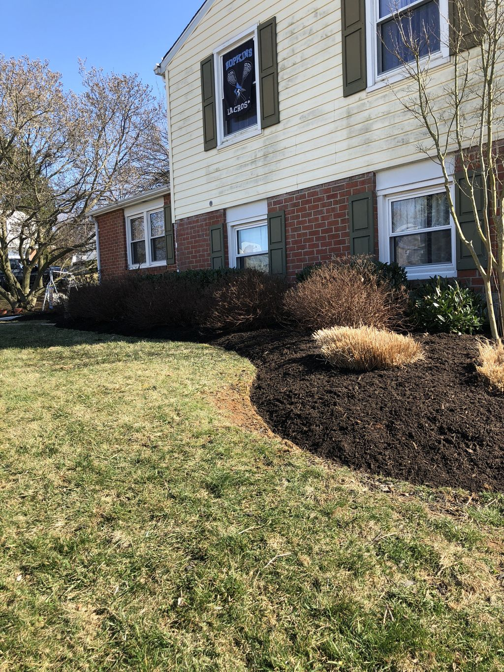 Spring Clean up & Mulching