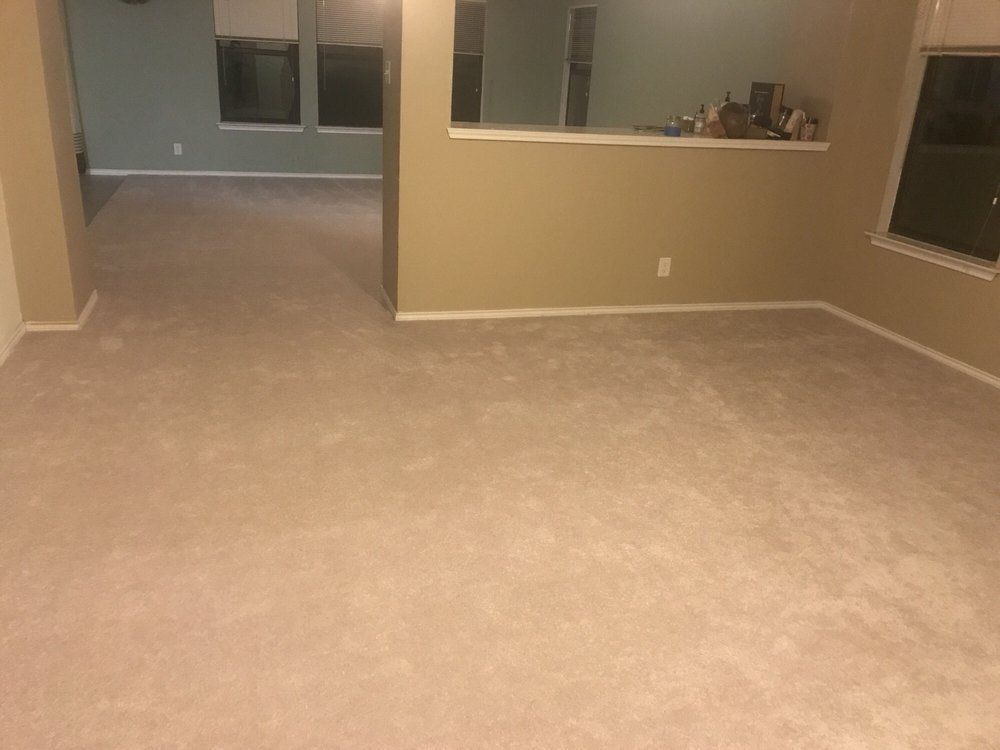 Entire House of Carpet, 1300 SQFT & Stairs